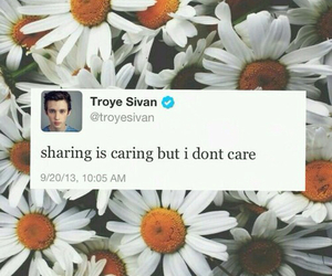 troye sivan, funny, and tweet image