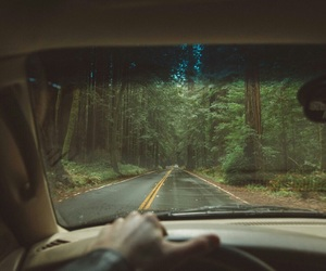 aesthetic, forest, and car image