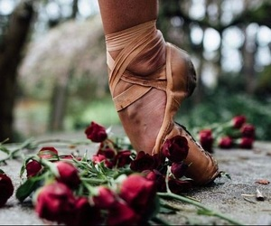ballet, flowers, and red image