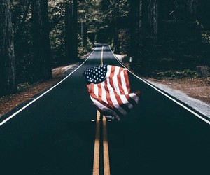 america, forest, and nature image