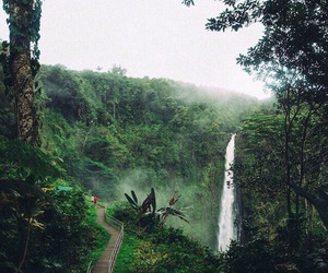 green, trees, and waterfall image