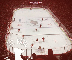 hockey, state, and wild image