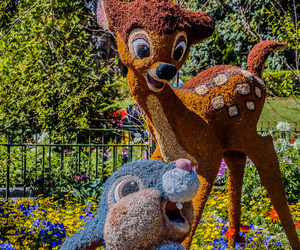 bambi, disney world, and thumper image