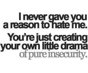 quote, drama, and hate image