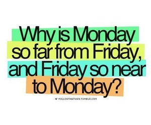 friday, life, and monday image