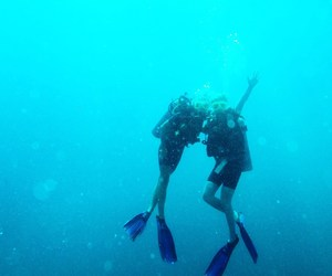 blue, diving, and sea image