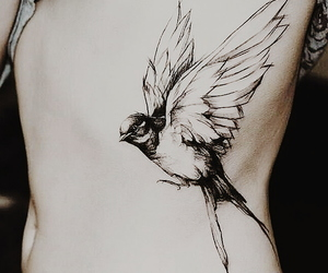 bird, ink, and tattoo image