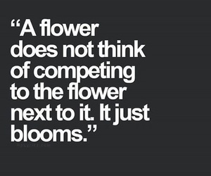 bloom, flower, and quotes image