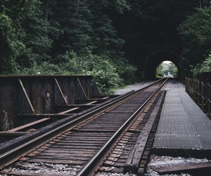 nature, vintage, and train image