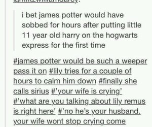 harry potter, tumblr, and james potter image