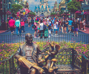 disney world and magic kingdom image