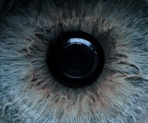 blue, eye, and iris image