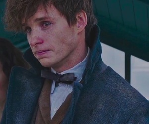 adorable, blue, and newt scamander image