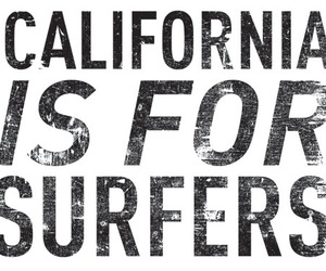 california and surfers image