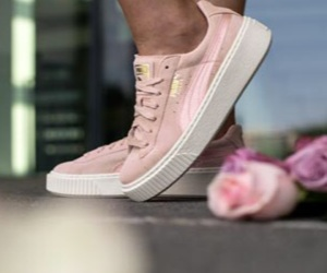 pink, puma, and rose image