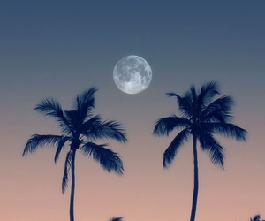 moon, wallpaper, and beach image