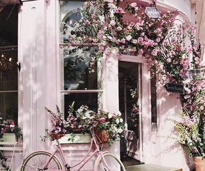 aesthetic, bicycle, and flowers image