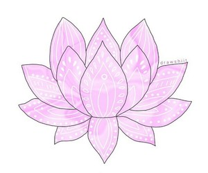 overlay, pink, and flower image