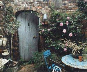 blossoms, shabby chic, and flowers image