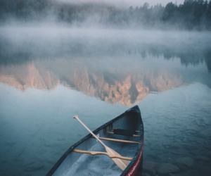 beautiful, boat, and forest image