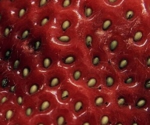 strawberry, red, and theme image