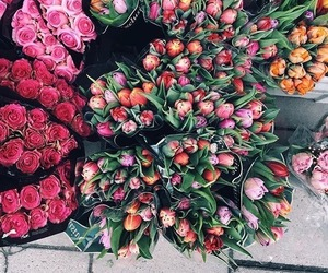 bouquets, flowers, and tulips image
