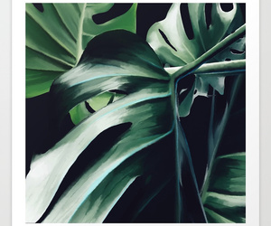 summer, tropical, and monstera deliciosa image