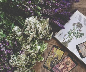 aesthetic, inspiration, and pagan image