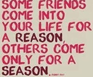 quote, friends, and reason image