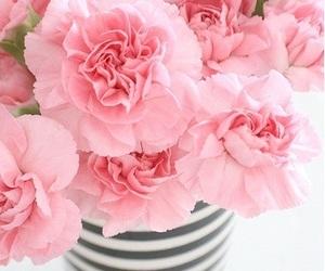 flower delivery abu dhabi image