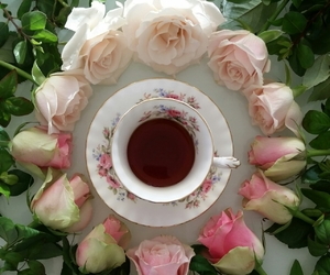 rose, tea, and roses image