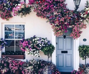 blue, flowers, and house image