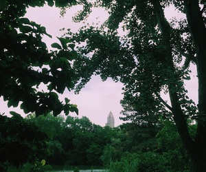 adventure, Central Park, and happiness image