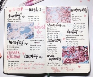 journal, notes, and bullet journal image