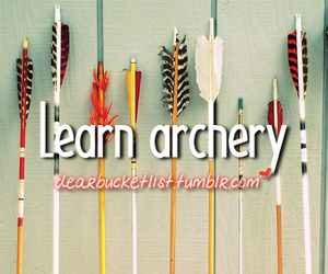 archery and before i die image