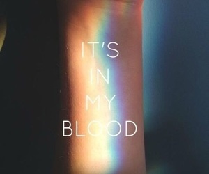 rainbow, blood, and lesbian image