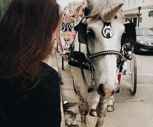 brunette, girl, and horse image