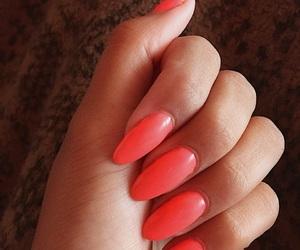 nails and summernails image
