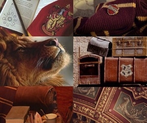 aesthetic, brave, and gryffindor image