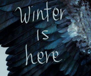 stark, got, and winter is here image