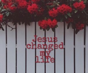 flowers, jesus, and red image