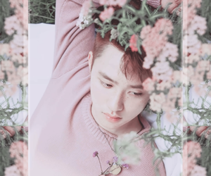 exo, wallpaper, and d.o image