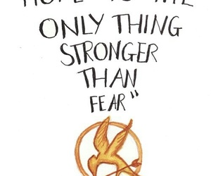 book, suzanne collins, and thg image