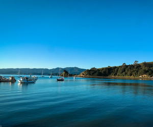beach, calm, and coromandel image