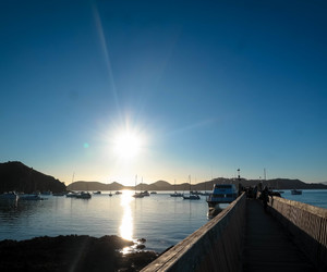 port, coromandel, and sunset image