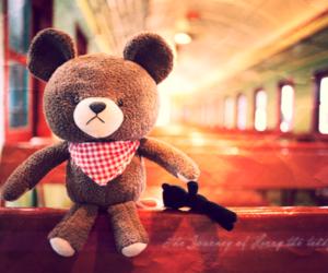 bear, cute, and love image