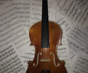 classical, instrument, and music image