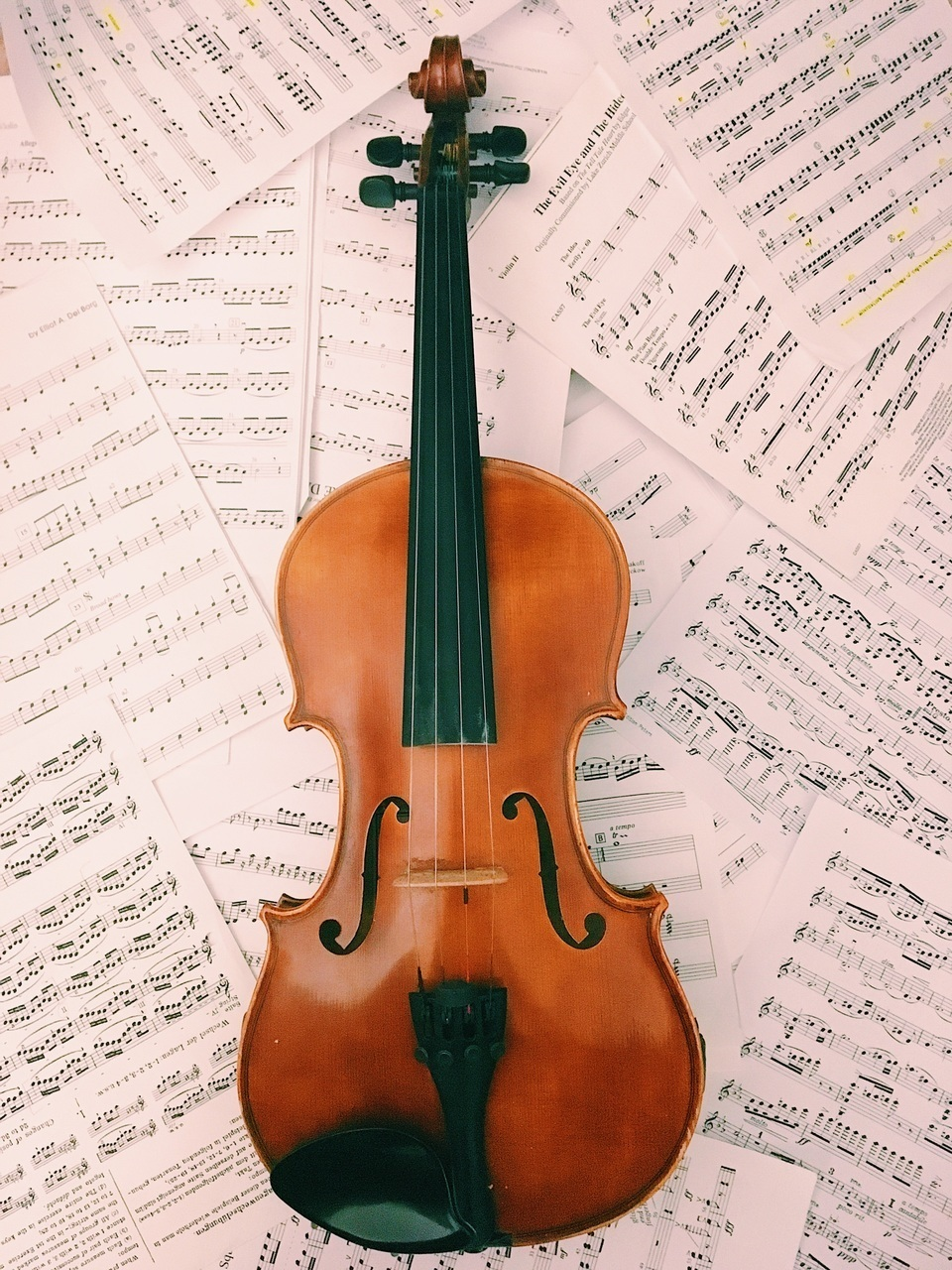 beautiful, classical, and orchestra image