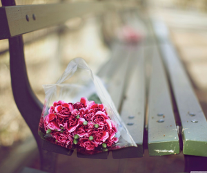 flowers, bench, and pink image
