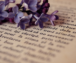books, flower, and spring image